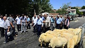 Başkan Çınar kurbanlık satış yerlerini inceledi