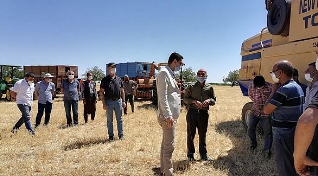 Akçadağ'da arpa ve buğday hasadı başladı.